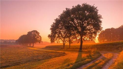 Arrangement Vakantieboerderij de Holdeurn | Rijk van Nijmegen