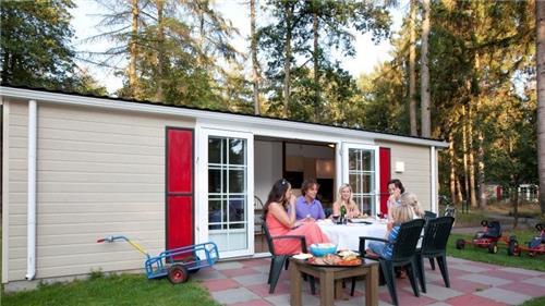 Arrangement Roompot Bospark Lunsbergen   Drenthe