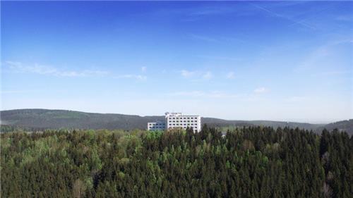 Arrangement Ferien Hotel Rennsteigblick   Harz
