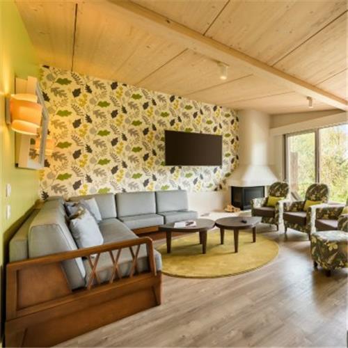 Villages Nature® Paris Premium cottage
