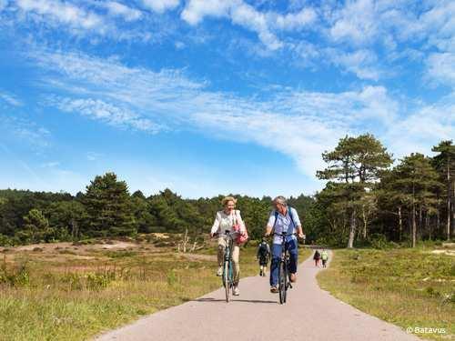 Fietsvakantie fietsen Dwingelderveld